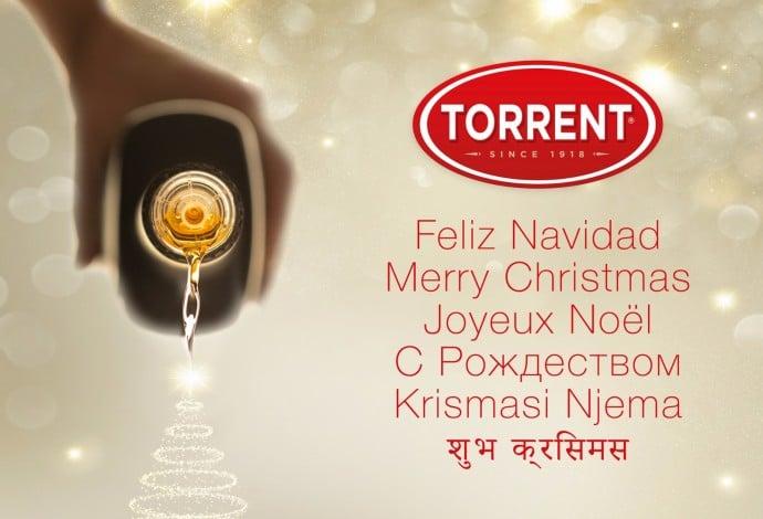 8eb3b476 f773 4b7c 8ccd 927957f82e8d a9cbe95b449cfd10e01163c9fb96a394 | Grupo Torrent España