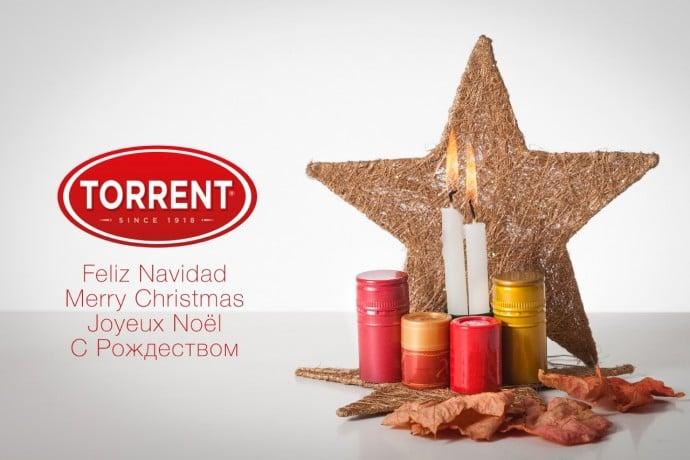 N14 1 627f82e3ed588eba41bf3bca78751e58   Grupo Torrent España