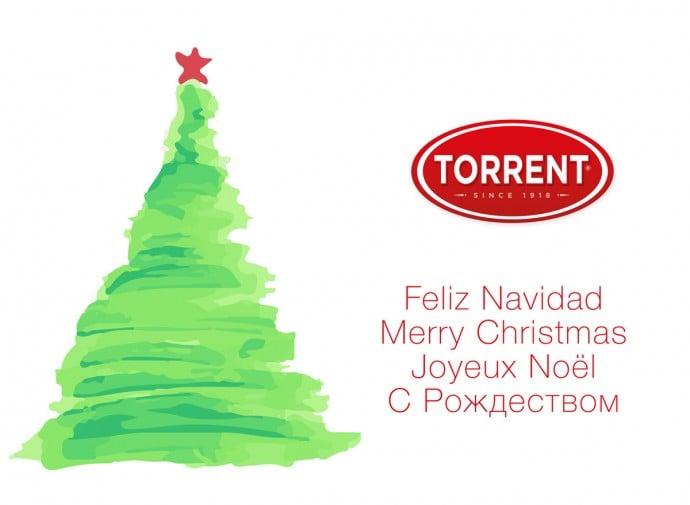 navidad 8d0566593cc7bac7cf5c4aa458a48f1f | Grupo Torrent España