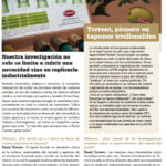 Olimerca3 | Grupo Torrent España
